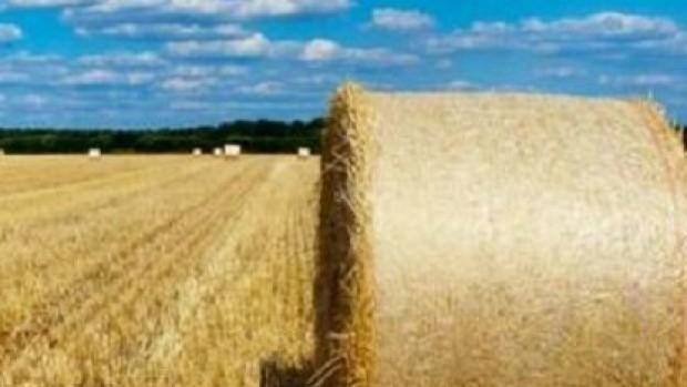 Høstvandring med salmebog