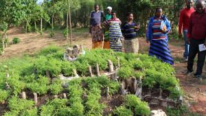 Nyt projekt i Burundi